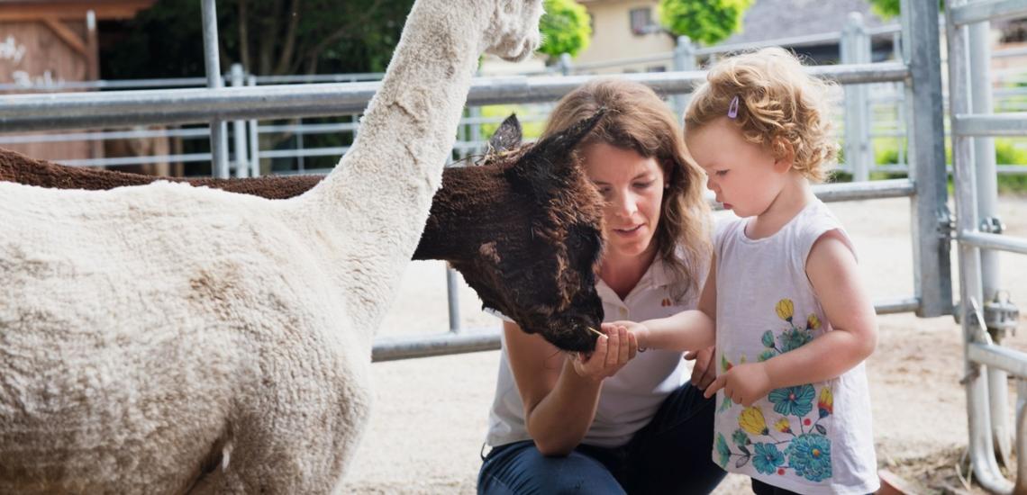 Frau mit Kind und Alpakas