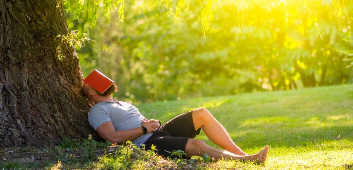 Mann liegt unter Baum mit Buch auf dem Gesicht