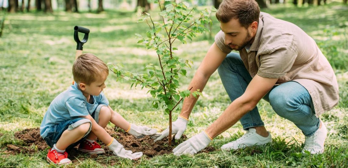Mann und Jungen pflanzen Baum