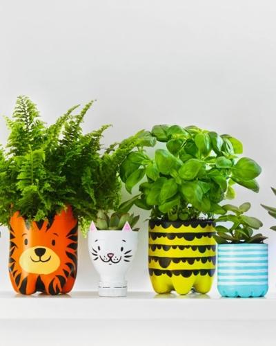 Bunte Blumentöpfe mit Pflanzen