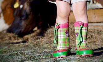 Kinderbeine in Gummistiefeln im Kuhstall