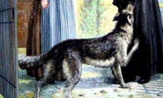 Zeichnung Hund