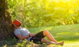 Mann liegt unter Baum mit einem Buch auf dem Gesicht