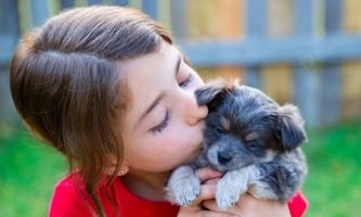 Mädchen küsst Hundewelpen